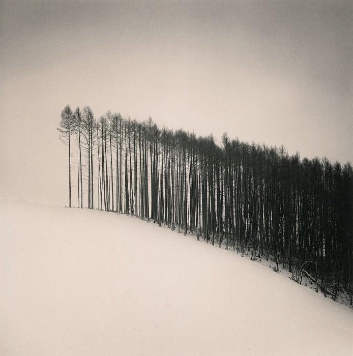 Michael Kenna Forest Edge Hokuto Hokkaido Japan 2004 40648 184. часть 4 - европейского искусства Европейская живопись