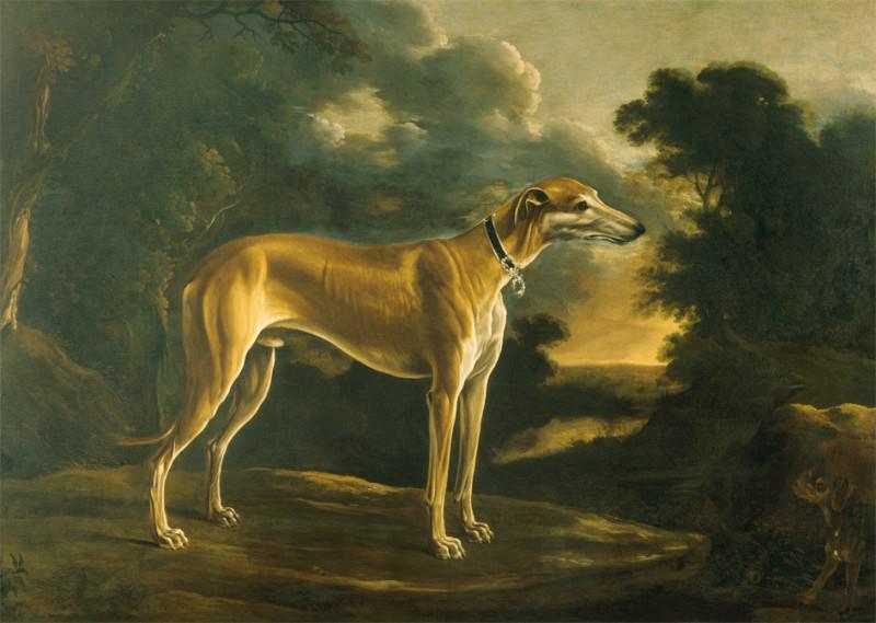 Michelangelo Pace called Il Campidoglio Portrait of a Greyhound with Pup against a Landscape Background 18043 203. часть 4 -- European art Европейская живопись