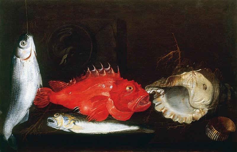 Paolo Porpora Still Life with Mullet Scorpion Fish Weever two Shells and a Medallion 17940 203. часть 4 -- European art Европейская живопись