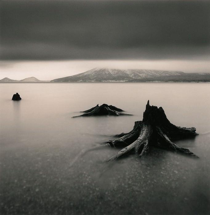 Michael Kenna Tree Remains Bifue Hokkaido Japan 2004 40649 184. часть 4 -- European art Европейская живопись
