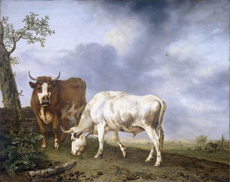 Kobell, Jan (II) -- Ossen in de weide, 1806. Rijksmuseum: part 2