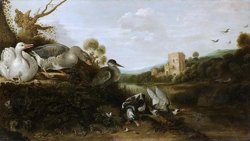 Hondecoeter, Gijsbert Gillisz. de -- Watervogels, 1652. Rijksmuseum: part 2