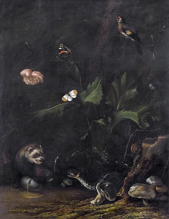 Borssom, Anthonie van -- Dieren en planten, 1650-1677. Rijksmuseum: part 2