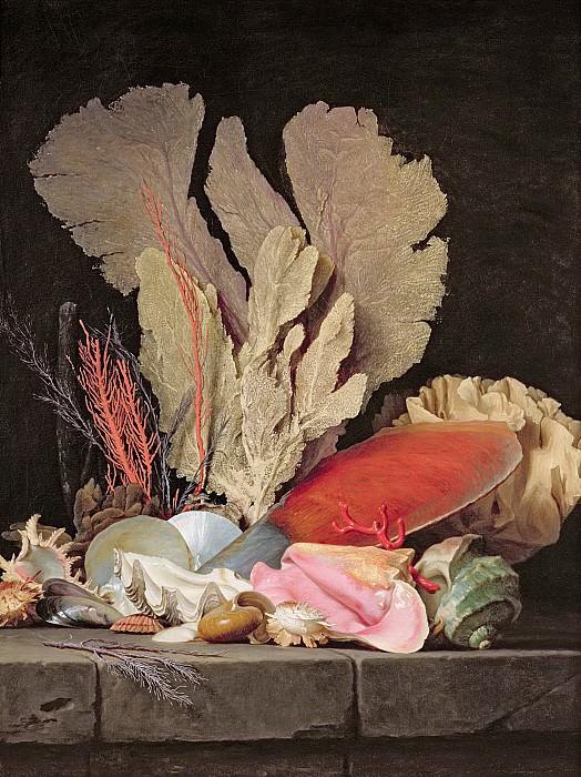 Валайе-Костер, Анна (Париж 1744-1818) -- Натюрморт с водорослями, литофитами и раковинами. часть 6 Лувр