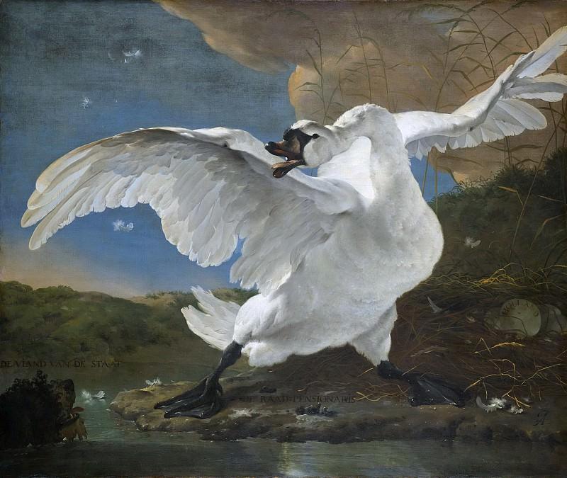 Asselijn, Jan -- De bedreigde zwaan; later opgevat als allegorie op Johan de Witt, 1640-1652. Rijksmuseum: part 1