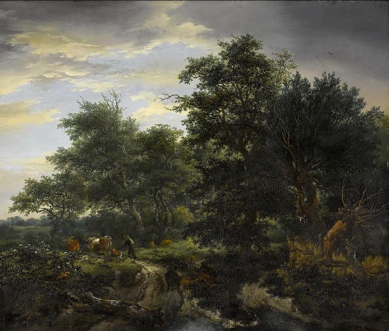 Ruisdael, Jacob Isaacksz. van -- Bosgezicht, 1653. Rijksmuseum: part 1