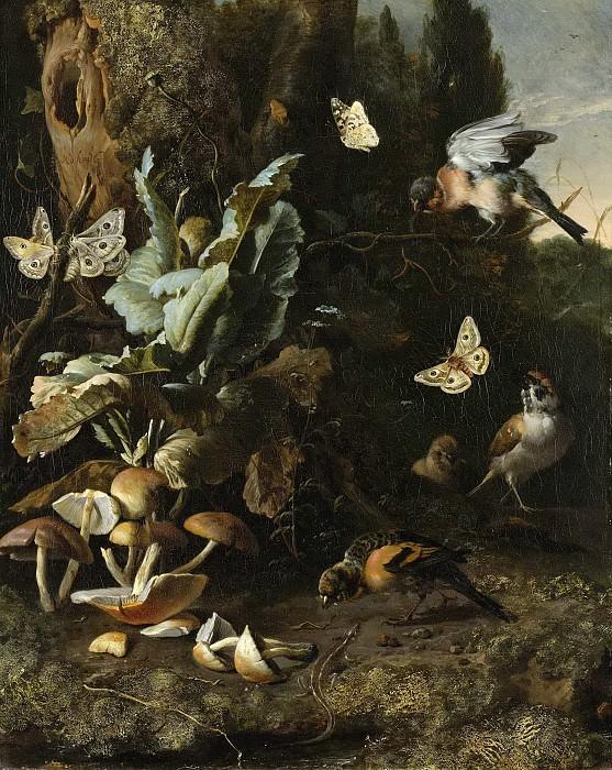 Hondecoeter, Melchior d -- Dieren en planten, 1668. Rijksmuseum: part 1