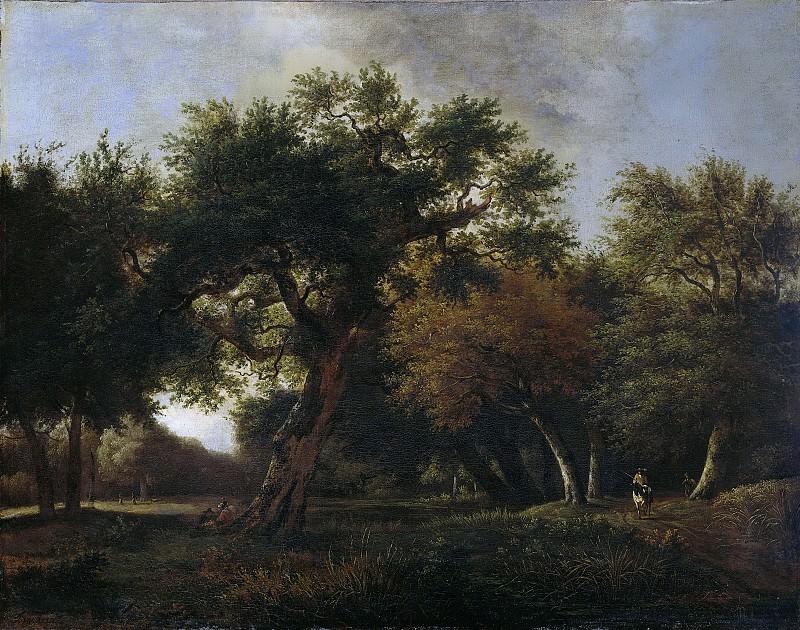 Ян ван Кессель (1641-1680) - Лес, 1660-1680. Рейксмузеум: часть 1
