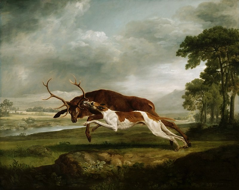 George Stubbs, English, 1724-1806 -- Hound Coursing a Stag. Philadelphia Museum of Art