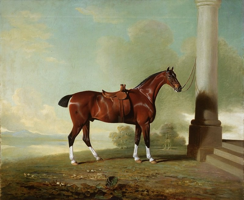 Benjamin Marshall, English, 1768-1835 -- Favorite Chestnut Hunter of Lady Frances Stephens. Philadelphia Museum of Art