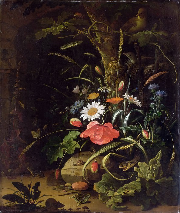 Abraham Mignon -- Flowers, birds, insects and reptiles. Part 3 Louvre