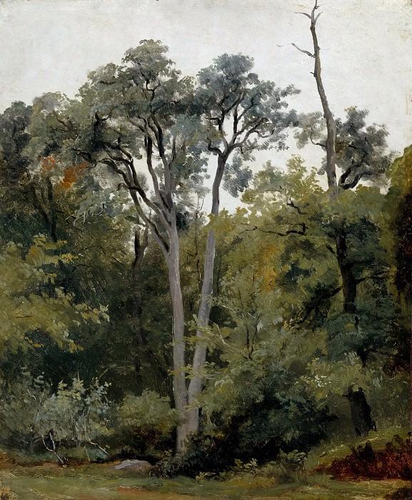Лепринс, Робер-Леополь (1800-1847) -- Пейзаж в Шайи. часть 3 Лувр