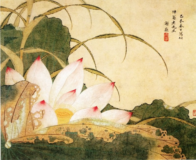 Xie Sun. Chinese artists of the Middle Ages (谢荪 - 荷花图)
