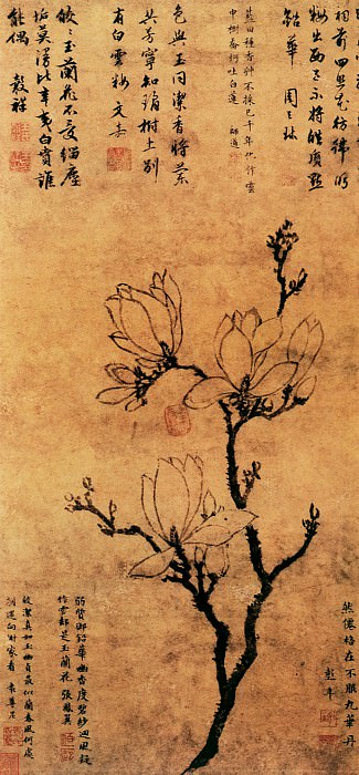 Wang Gouxiang. Chinese artists of the Middle Ages (王彀祥 - 玉兰图)