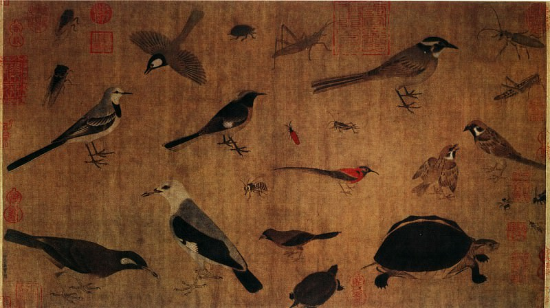 Huang Quan. Chinese artists of the Middle Ages (黄筌 - 写生珍禽图)