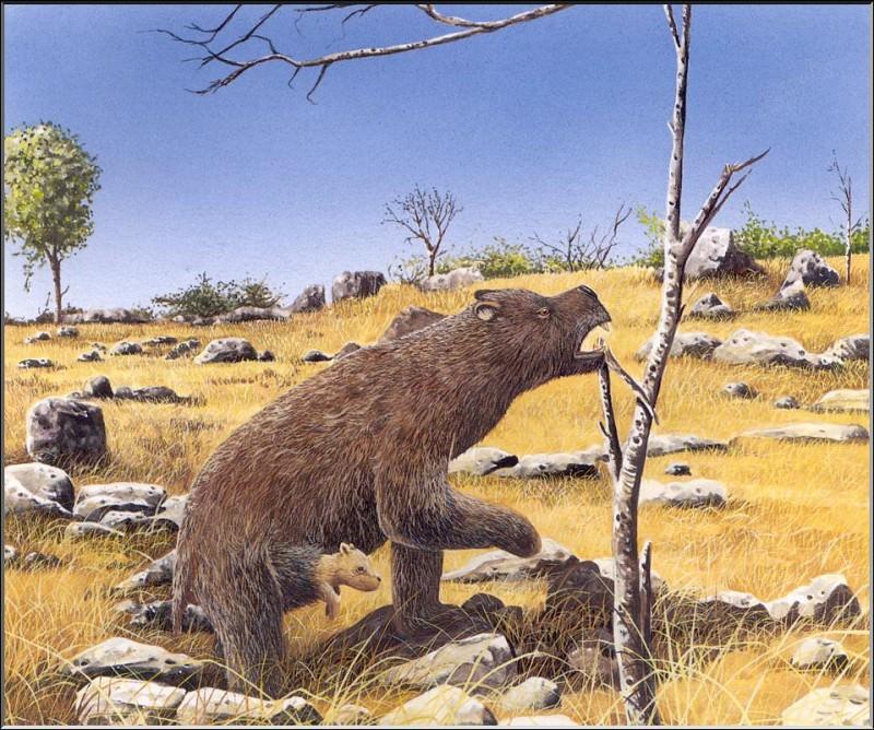 PO ExtAn 094 Diprotodontide. PO_Extinct_Animals