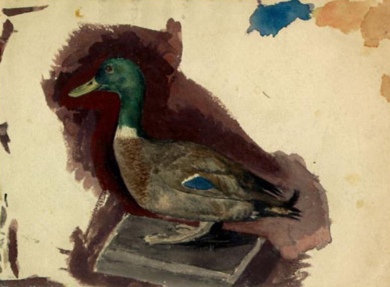 Stuffed duck (student work). Roerich N.K. (Part 1)