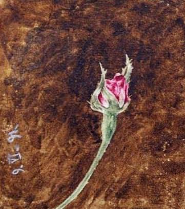 Rosebud. Roerich N.K. (Part 1)