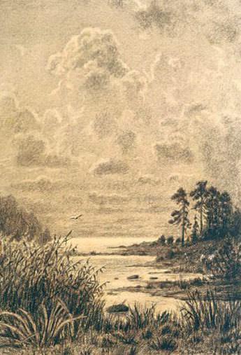 Просторы Ладожского озера. Копия с рисунка И.И. Шишкина. Рерих Н.К. (Часть 1)