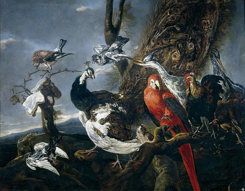 Fyt, Jan -- Concierto de aves. Part 4 Prado Museum