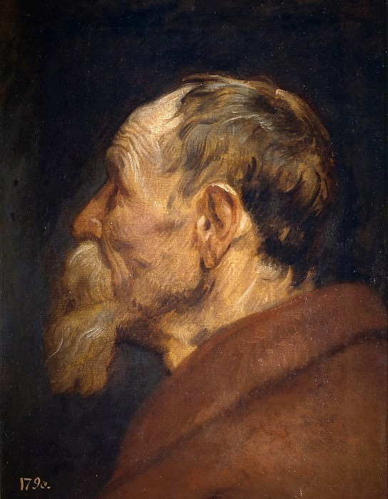 Dyck, Anton van -- Cabeza de anciano. Part 4 Prado Museum