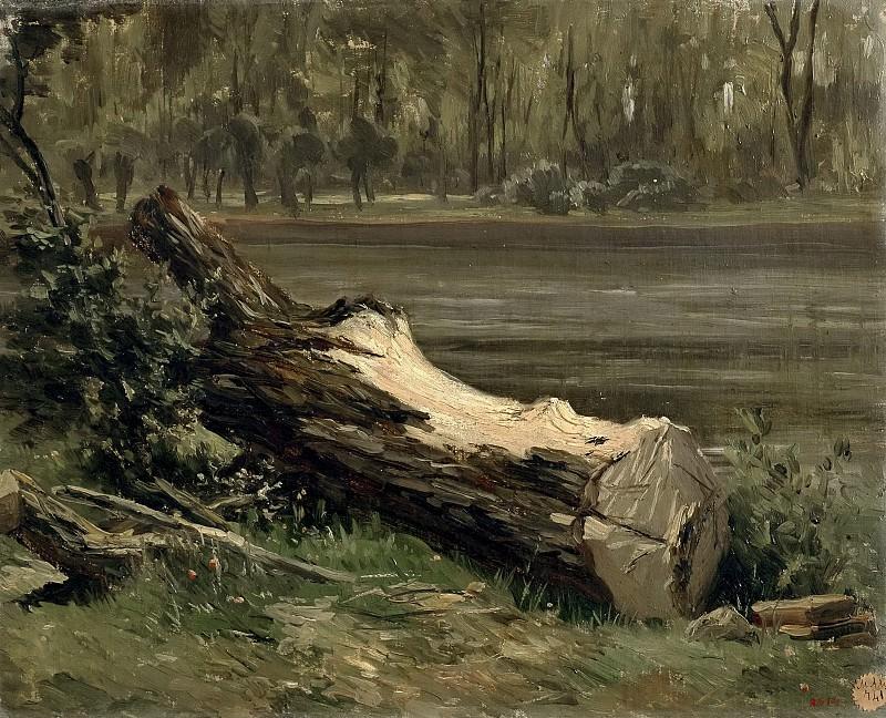 Haes, Carlos de -- Estudio de tronco (Casa de Campo). Part 4 Prado Museum