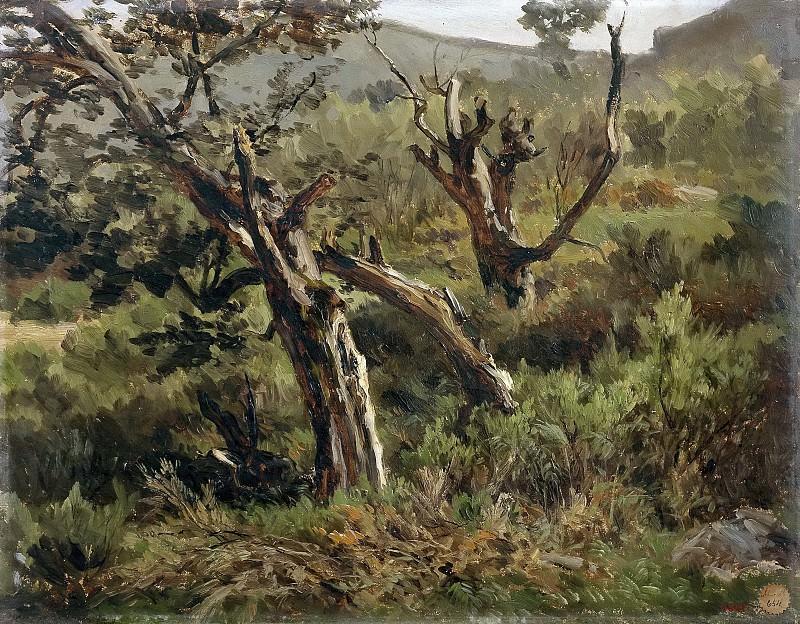 Haes, Carlos de -- Bosque de Alsasua. Part 4 Prado Museum