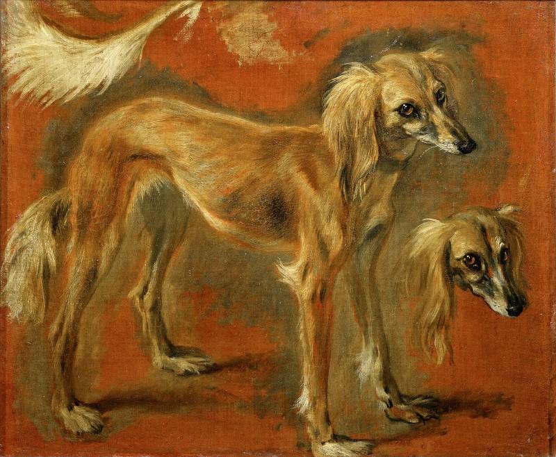 Pieter Boel (1622-1674) -- Views of a Greyhound. Part 1 Louvre