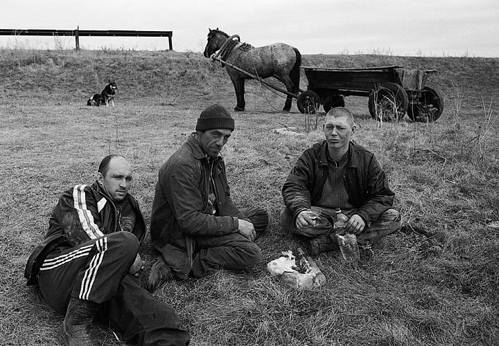 Exhibitions of the photographer Alexandra Demenkova