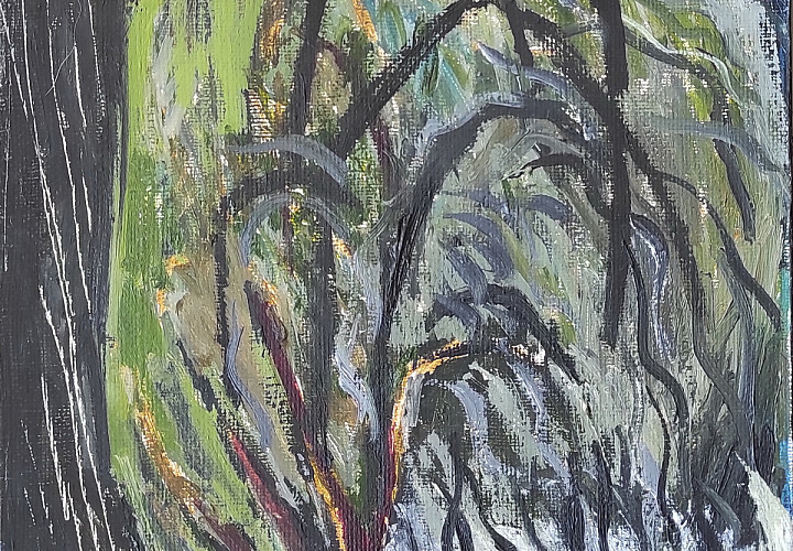 Выставка «Зелёный дом на фоне неба». Ольга Цимболенко