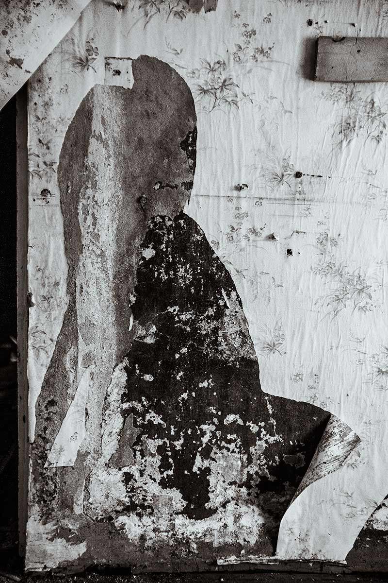 Fabularis visivae, © Александра Ов-Лебедев, 2011