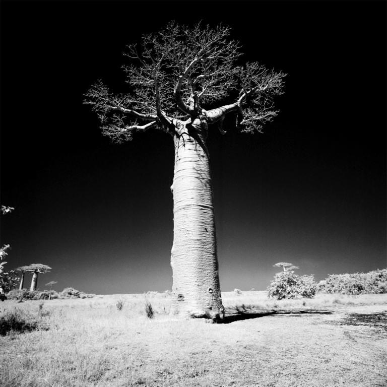 Выставка Арсена Ревазова «Невидимый свет»