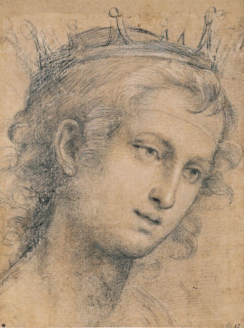 Джаванни Баттиста Сольяни (1492–1544). Голова молодого святого. Ок. 1521. ГМИИ им. А.С. Пушкина